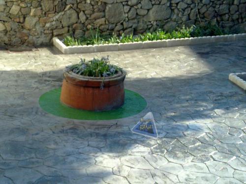 Remate con hormigon impreso adoquin circular